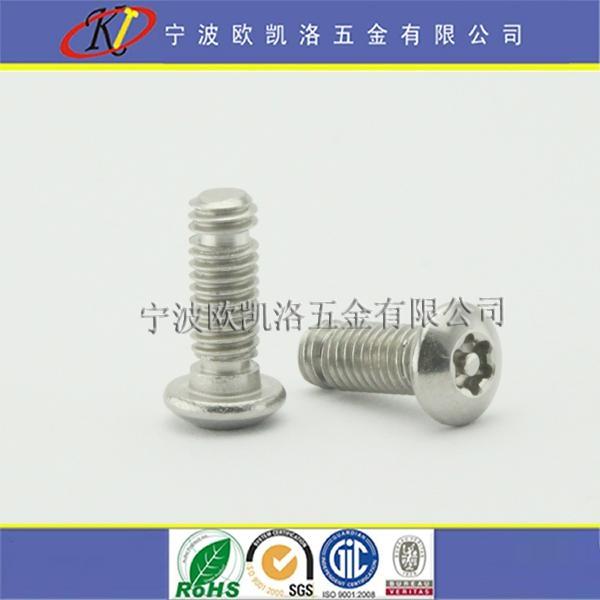 寧波不鏽鋼梅花槽帶柱防盜螺絲 1