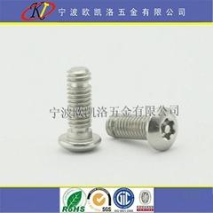 宁波不锈钢梅花槽带柱防盗螺丝