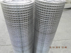 welded wire mesh high quality and low cost
