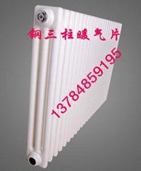 QFGZ306/X-1.0型鋼制圓三柱暖氣片鋼制柱型散熱器