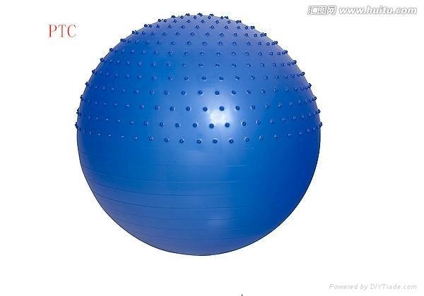 gym ball 3