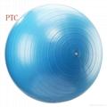 gym ball 5