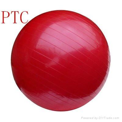 fitness  gym ball 2