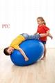 fitness  gym ball 5