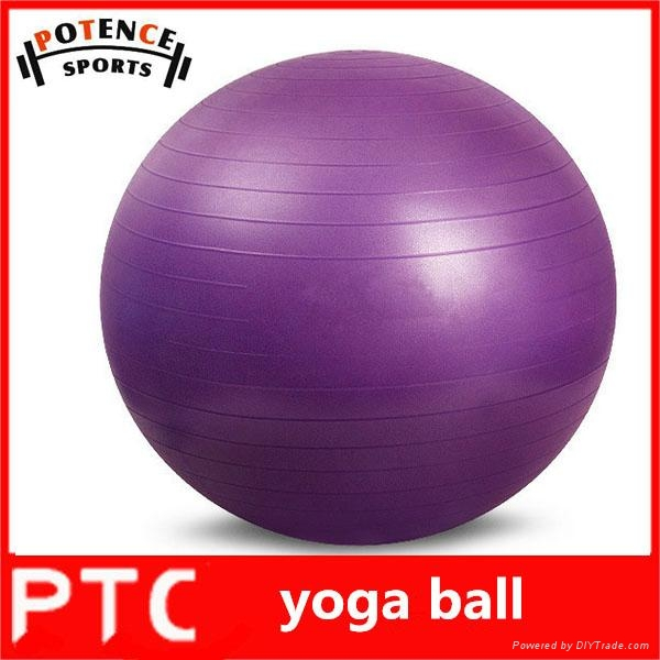 fitness  gym ball 1