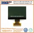 LCD 液晶顯示屏COG液晶模