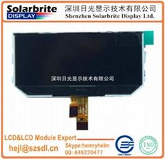 COG LCD module VA-LCD