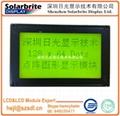 国内COB LCD液晶显示模组