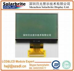 FSTN LCD module with backlight