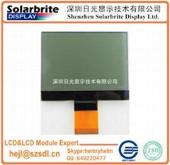 FSTN LCD MODULE