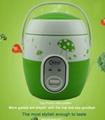 BLB C18 portable travel mini cooker
