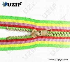 Fancy Dress Zipper