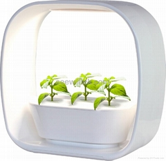 ZT01 LED mini garden indoor garden