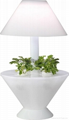 ZT07 LED mini garden plant desk lamp