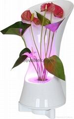 ZT08 LED mini garden wall lamp