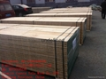 pine/poplar  LVL Scaffold Board 3