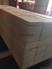 pine LVL Scaffold Board  Plank to The Middle East