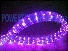 LED Rope Lights 4