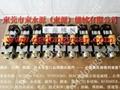 肯岳亞沖床超負荷油泵LS-257 3