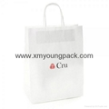 Promotional custom printed luxury ribbon handle paper gift bag  6