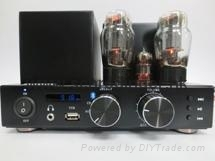 Vacuum Tube Amplifier with Bluetooth Function and FM Radio