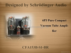 Vacuum Tube Amplifier with Bluetooth