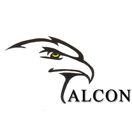 Shanghai Falcon Technology Co , Limited (China Manufacturer