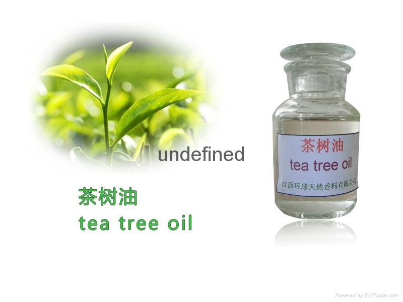 100% Pure And Natural Tea Tree Oil Supplier 1