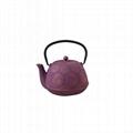 Flower Cast Iron Teapot 2