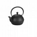 Cast Iron Teapot 3