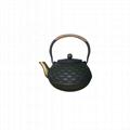 Chinese Antique Cast Iron Teapot 2