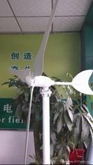 50w 100w mini wind power generator wind turbne generator windmill for home