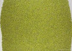 Prime Quality Green Mung Beans (Vigna Radiata)