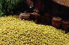 Organic Non-Gmo Soybeans
