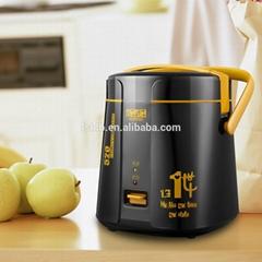 New mini rice cooker