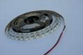 5050 一米30燈 不防水燈帶 3