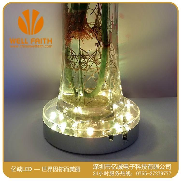 创意防水可遥控LED水族潜水灯 4