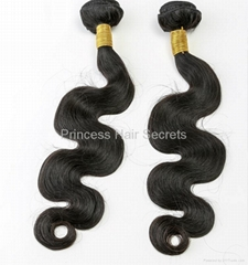Luxury and Elegant Brazilian Wavy Remy Human Hair Extension