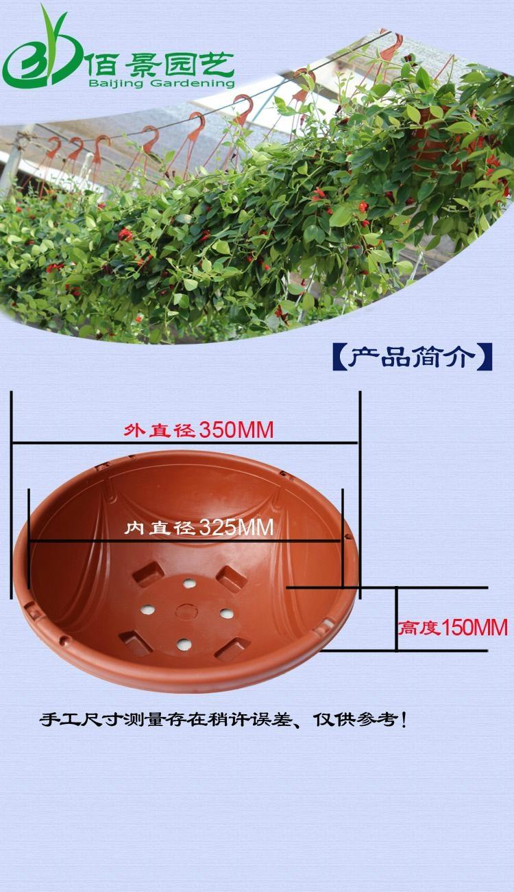 360紅色塑料吊蘭花盆 5