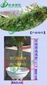 360白色塑料花盆吊蘭綠蘿種植盆 3
