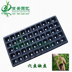 塑料育苗穴盤秧盤