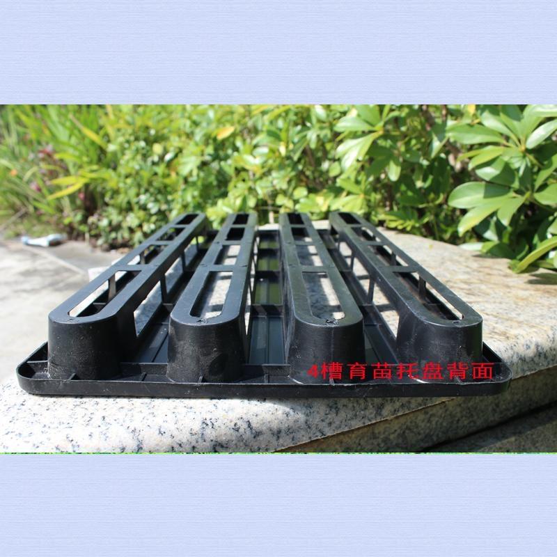 2槽4槽塑料蘭花週轉托盤黑色 2