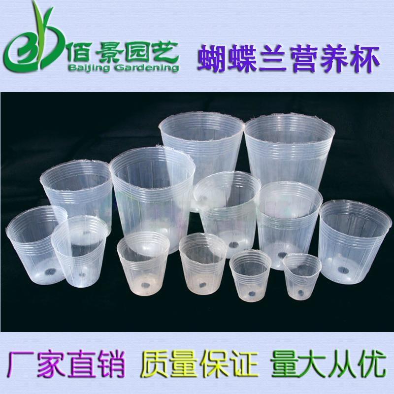 透明塑料營養缽育苗袋蝴蝶蘭專用 1