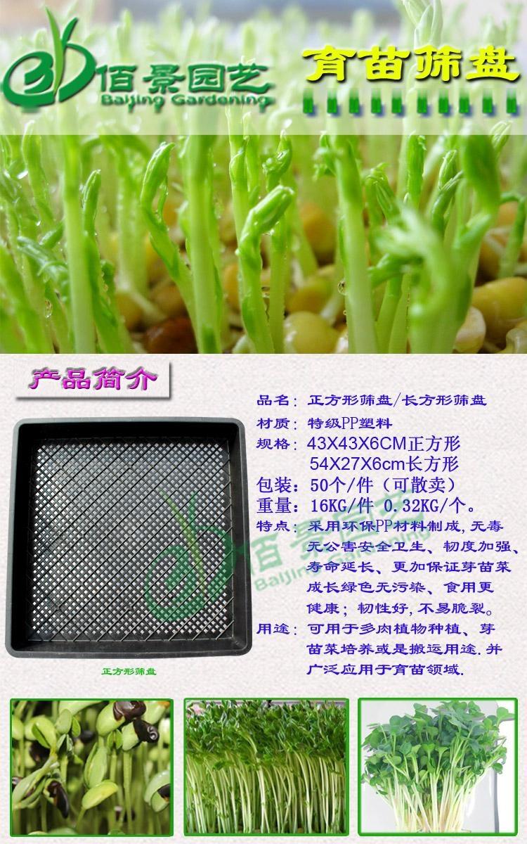正方形長方形塑料育苗篩盤 5