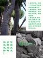 保濕保溫包樹棉布 3