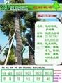 保濕保溫包樹棉布 5