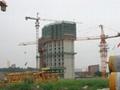 Construction Equipment Tower Crane QTZ40(TC5008)
