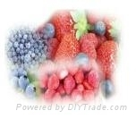 IQF,FD CONCENTRATED FRUIT PRODUCTS