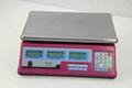 Acs Price Computing Scale TS-806