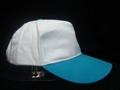 5panel heavy brush cotton baseball cap